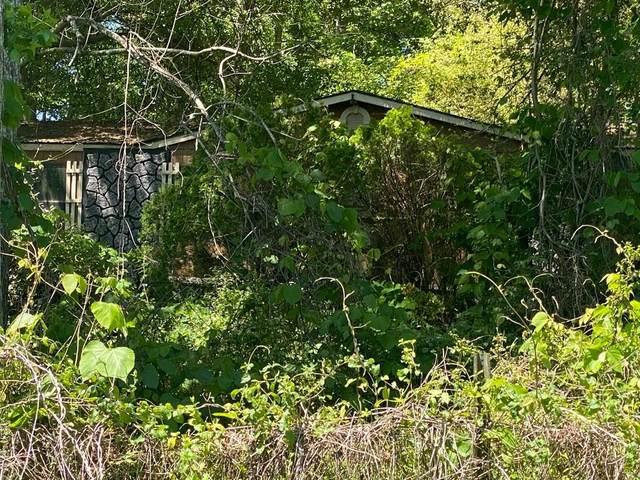 79 Pine Lane, Villa Rica, GA 30180 (MLS #6880198) :: Kennesaw Life Real Estate