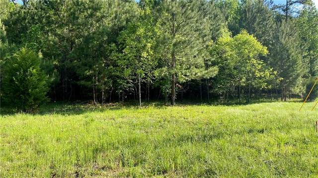 Lot 30 Mary Saphire Road, Dawsonville, GA 30534 (MLS #6881180) :: RE/MAX Prestige