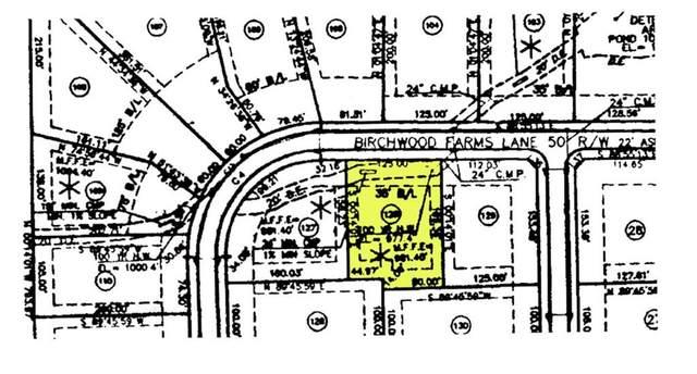 208 Birchwood Farms Lane, Dallas, GA 30132 (MLS #6882554) :: Kennesaw Life Real Estate