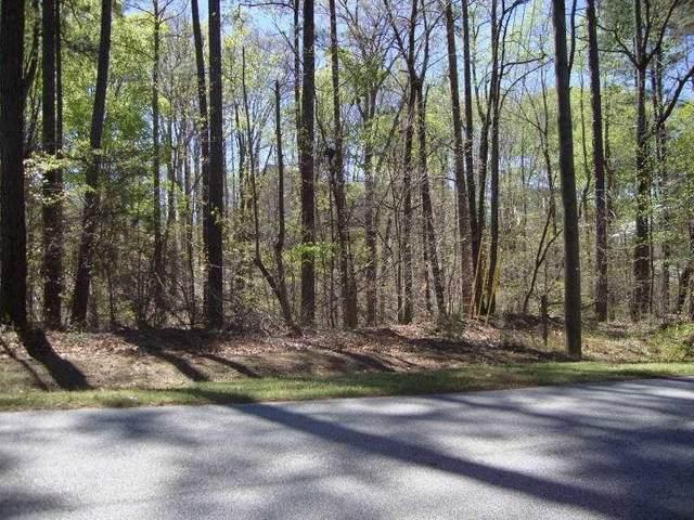 2515 Slater Mill Road, Douglasville, GA 30135 (MLS #6882722) :: Rock River Realty