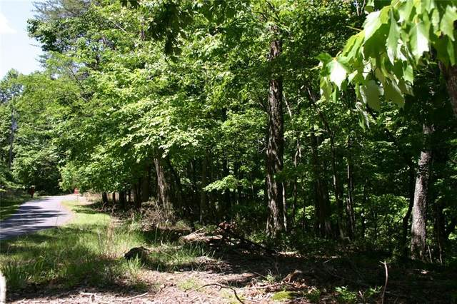 1367 Oglethorpe Mountain Road, Jasper, GA 30143 (MLS #6884071) :: North Atlanta Home Team