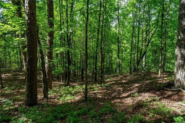 LT 11 Long Branch Trail, Ranger, GA 30734 (MLS #6885722) :: Kennesaw Life Real Estate