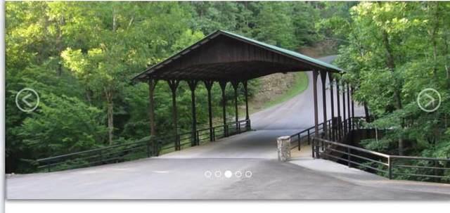 37 Mountain Creek Hollow Drive, Talking Rock, GA 30175 (MLS #6887424) :: North Atlanta Home Team