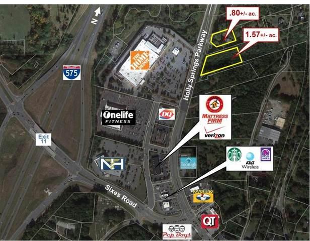 4519 Holly Springs Parkway, Canton, GA 30115 (MLS #6888644) :: North Atlanta Home Team