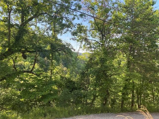 626 NE Ocelot Trail NE, Ranger, GA 30734 (MLS #6890508) :: North Atlanta Home Team