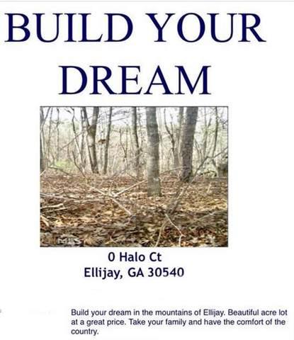 0 Halo Court, Ellijay, GA 30540 (MLS #6891509) :: Kennesaw Life Real Estate