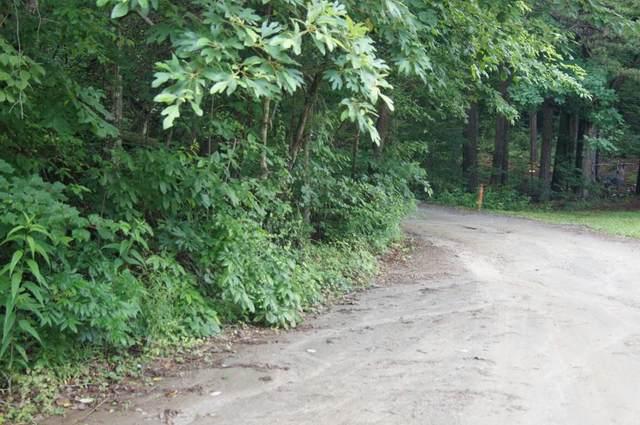 0 Gold Diggers Road, Dahlonega, GA 30533 (MLS #6899777) :: Lucido Global