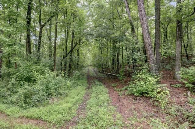 0 Jones Road, Roswell, GA 30075 (MLS #6903014) :: RE/MAX Prestige