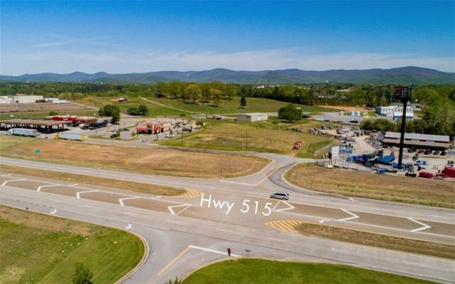 4 Hazel Mosely Drive, Jasper, GA 30143 (MLS #6903486) :: Dawn & Amy Real Estate Team