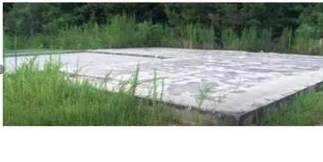 820 Tallulah Court, Atlanta, GA 30349 (MLS #6910531) :: Path & Post Real Estate