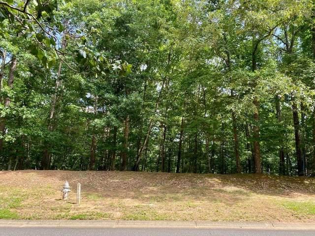321 William Falls Drive, Canton, GA 30114 (MLS #6912484) :: North Atlanta Home Team