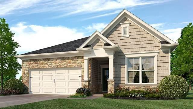 141 Cranberry Blossom Way, Dallas, GA 30132 (MLS #6914613) :: AlpharettaZen Expert Home Advisors