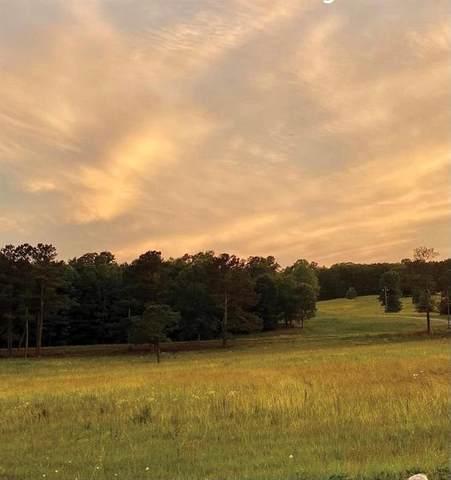 0 Old Alabama Road, Taylorsville, GA 30178 (MLS #6914889) :: North Atlanta Home Team
