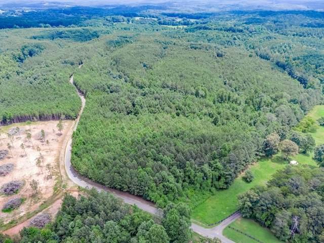 0 Soap Creek Road, Ball Ground, GA 30107 (MLS #6916862) :: Path & Post Real Estate