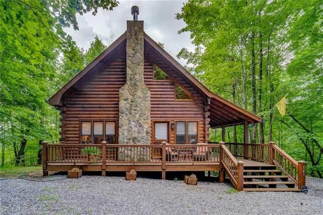 541 Little Bushy Head Road, Blue Ridge, GA 30513 (MLS #6918706) :: North Atlanta Home Team
