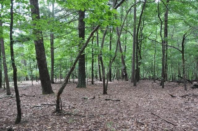 8131 Wilderness Parkway, Big Canoe, GA 30143 (MLS #6918927) :: RE/MAX Paramount Properties