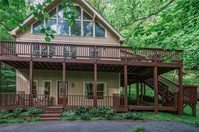 810 Little Pine Mountain Road, Jasper, GA 30143 (MLS #6923124) :: The Hinsons - Mike Hinson & Harriet Hinson
