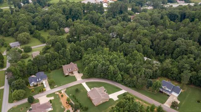 0 Park View Drive, Cleveland, GA 30528 (MLS #6923225) :: Maria Sims Group