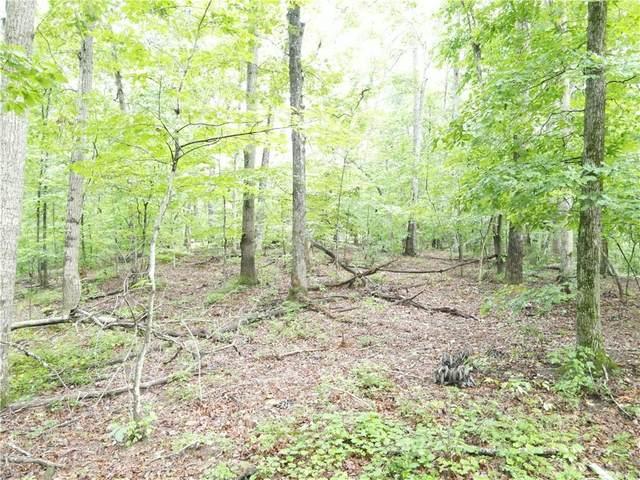 LL168 Nichols Trail, Talking Rock, GA 30175 (MLS #6924928) :: RE/MAX Paramount Properties