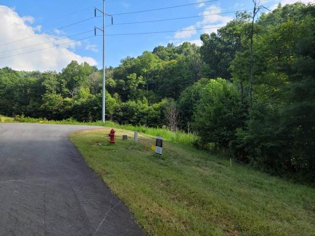223 Rushing Waters Drive, Blairsville, GA 30512 (MLS #6926480) :: North Atlanta Home Team