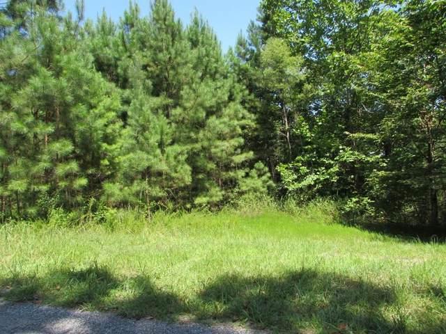 441 NE Marque Lane, Ranger, GA 30734 (MLS #6930122) :: Path & Post Real Estate