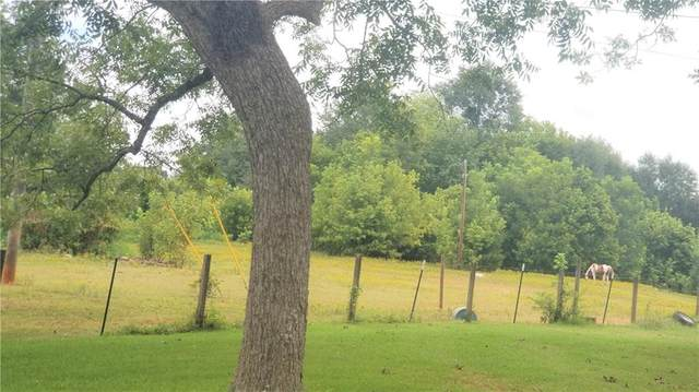 1217 Trice Cemetery Road, Thomaston, GA 30286 (MLS #6933727) :: North Atlanta Home Team