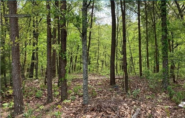 1358 Hunter Drive, Ranger, GA 30734 (MLS #6939496) :: North Atlanta Home Team