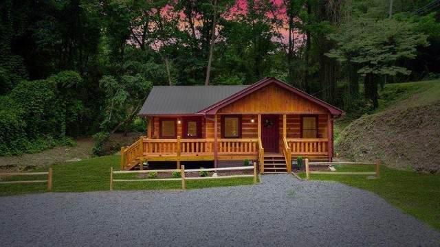 165 Corbin Hill Road, Ellijay, GA 30540 (MLS #6939788) :: 515 Life Real Estate Company
