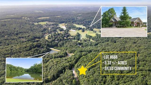 666 Mountain Sweet Drive, Clarkesville, GA 30523 (MLS #6940801) :: Path & Post Real Estate