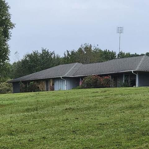 4225 Pine Vale Road, Gainesville, GA 30507 (MLS #6945094) :: Path & Post Real Estate