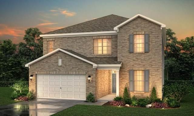 4100 Rock Cap (Lot 254), Buford, GA 30519 (MLS #6945412) :: North Atlanta Home Team