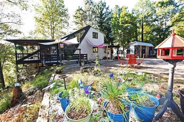 115 Rabbit Run, Dawsonville, GA 30534 (MLS #6956716) :: North Atlanta Home Team