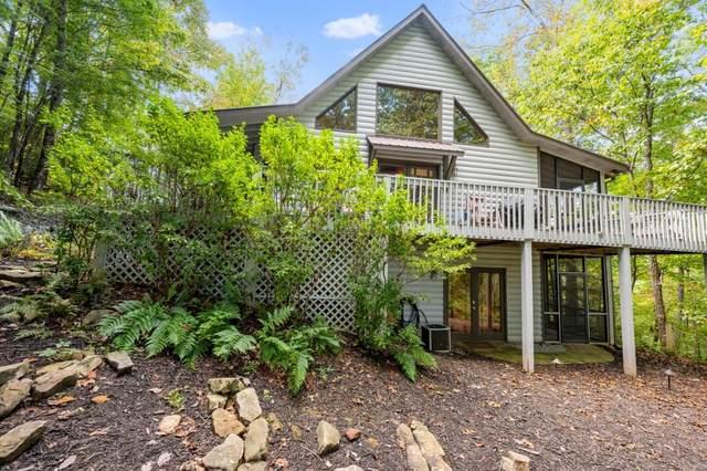 537 Bushy Head Road, Cherry Log, GA 30522 (MLS #6959213) :: The Kroupa Team | Berkshire Hathaway HomeServices Georgia Properties