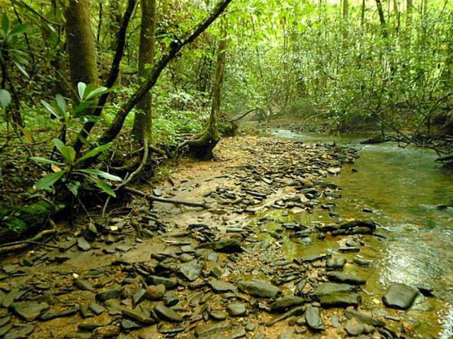 0 Falls Trail, Jasper, GA 30143 (MLS #5593045) :: The Bolt Group