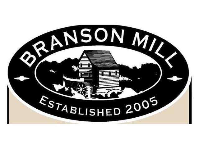 36 Branson Mill Drive NW, Cartersville, GA 30120 (MLS #5621286) :: North Atlanta Home Team