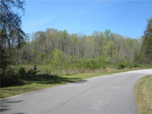 Lot 8 Robins Lane, Dahlonega, GA 30533 (MLS #5828130) :: North Atlanta Home Team