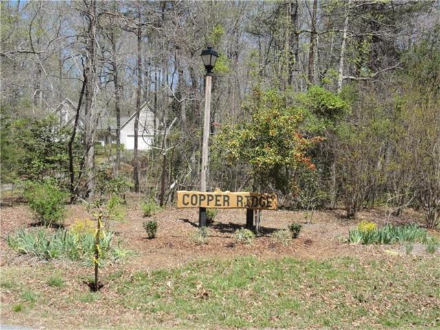 Lot 56 Lake Point Drive, Dahlonega, GA 30533 (MLS #5830448) :: North Atlanta Home Team