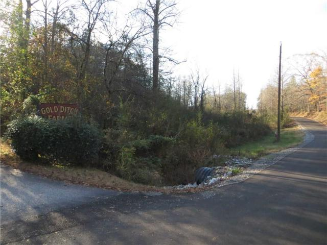 00 Gold Ditch Road, Cleveland, GA 30528 (MLS #5834504) :: North Atlanta Home Team
