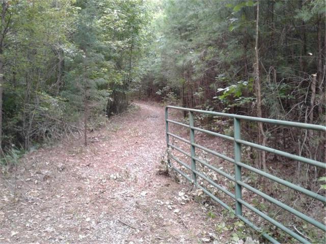 331 Turkey Creek Drive, Ball Ground, GA 30107 (MLS #5904818) :: Path & Post Real Estate