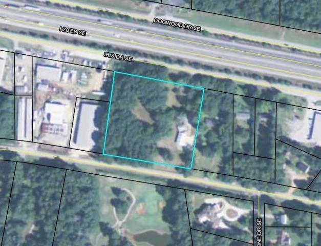 2381 Iris Drive SE, Conyers, GA 30013 (MLS #5931423) :: North Atlanta Home Team