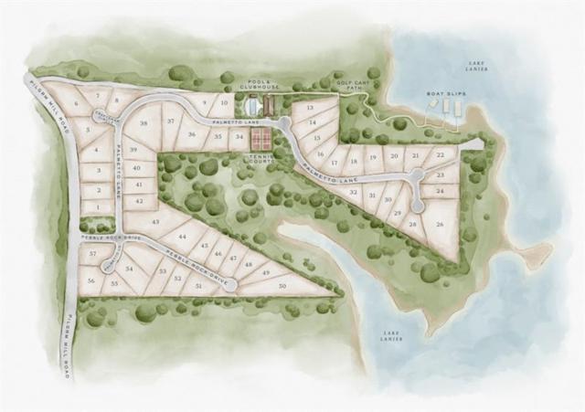 4690 Palmetto Lane, Cumming, GA 30041 (MLS #5943032) :: Iconic Living Real Estate Professionals