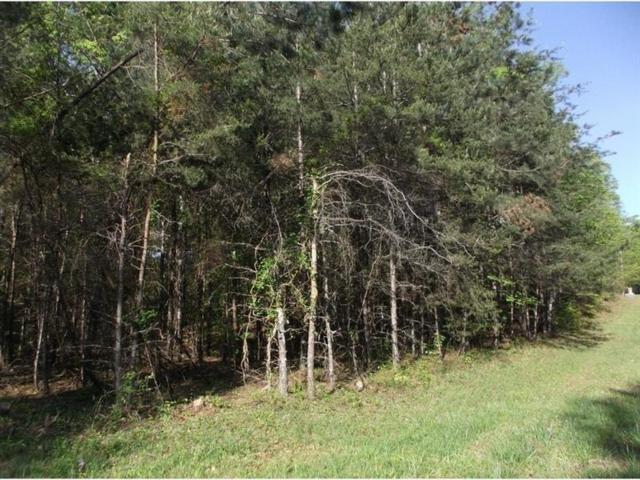 6403 Waterscape Ridge, Gainesville, GA 30506 (MLS #5943086) :: RE/MAX Paramount Properties
