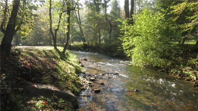 Lot 24 Tanager Trail, Ellijay, GA 30536 (MLS #6006740) :: The Cowan Connection Team
