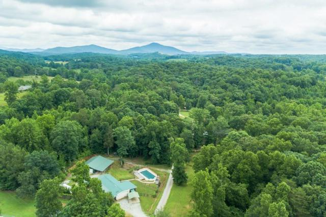 45 Chili Way, Dahlonega, GA 30533 (MLS #6028394) :: The Cowan Connection Team