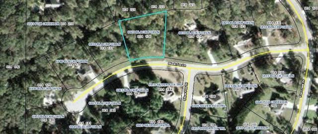 6920 Black Fox Lane, Cumming, GA 30040 (MLS #6035907) :: Iconic Living Real Estate Professionals