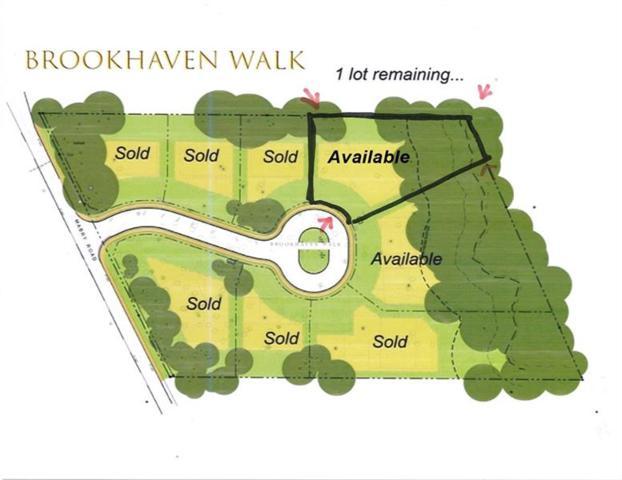 1152 Brookhaven Walk Way NE, Brookhaven, GA 30319 (MLS #6036502) :: North Atlanta Home Team