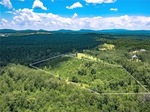 341 Wilderness Camp Road SE, White, GA 30184 (MLS #6039608) :: Ashton Taylor Realty