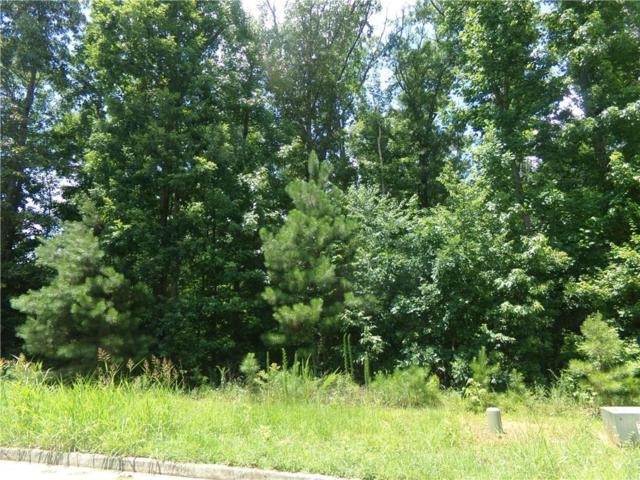 231 Mary Hill Lane, Douglasville, GA 30134 (MLS #6043360) :: North Atlanta Home Team