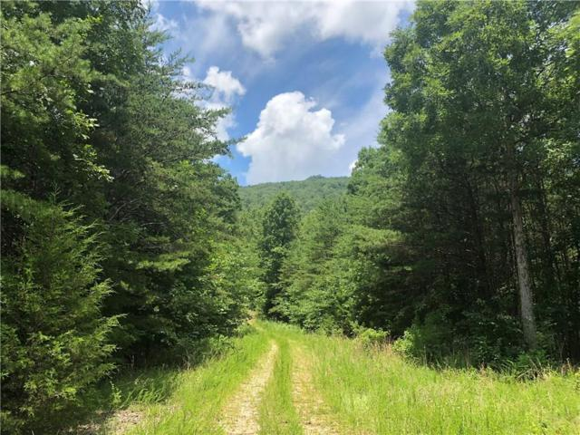 0 Newsome Gap Road, Rising Fawn, GA 30738 (MLS #6045858) :: The Cowan Connection Team