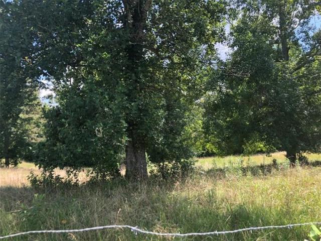 3820 Mason Creek Road, Winston, GA 30187 (MLS #6053291) :: Path & Post Real Estate